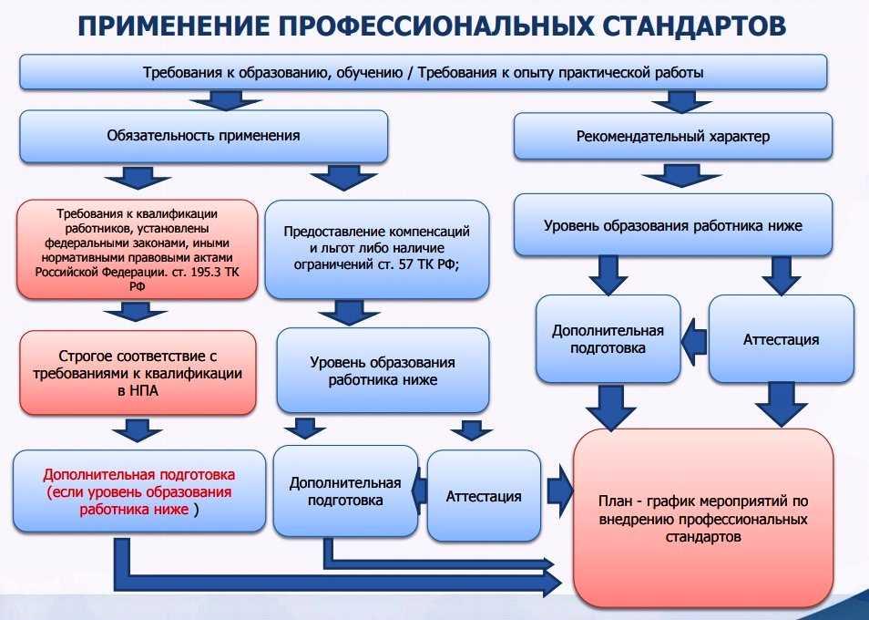 профстандарты инфографика